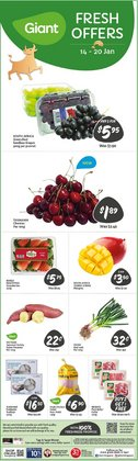 Supermarkets offers in the Giant catalogue in Singapore ( 2 days left )