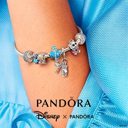 Premium Brands offers in the Pandora catalogue ( Expires Today)