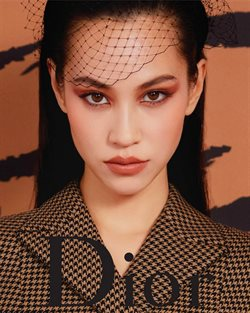 Dior catalogue ( More than a month )