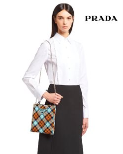 Prada catalogue ( More than a month )