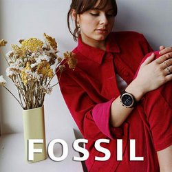 Clothes, shoes & accessories offers in the Fossil catalogue ( 4 days left)