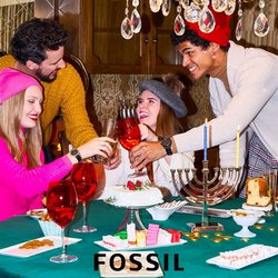 Fossil catalogue ( More than a month )