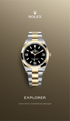 Jewellery & Watches offers in the Rolex catalogue ( More than a month)